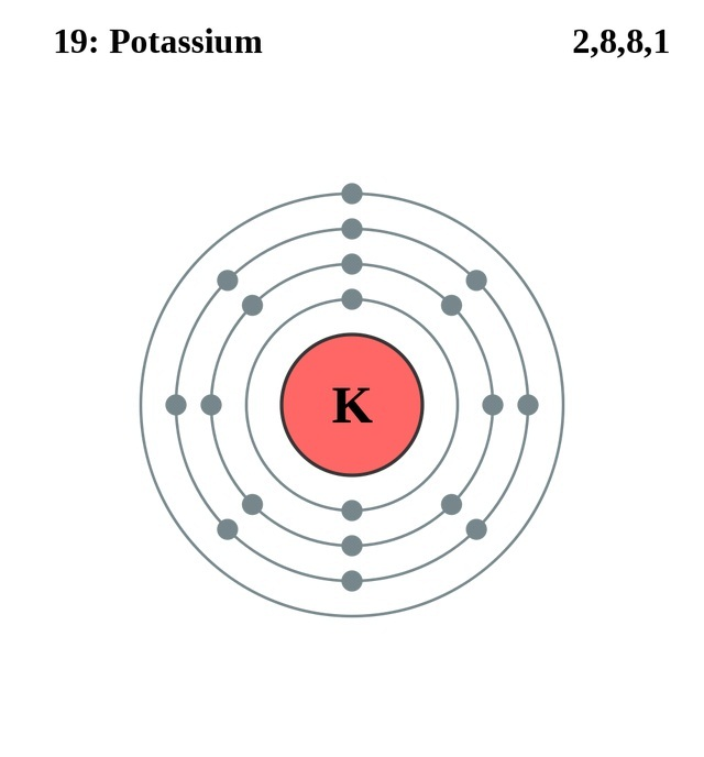potassium facts  symbol  discovery  properties  uses