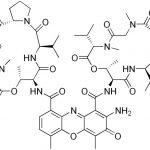 Actinomycin D Picture
