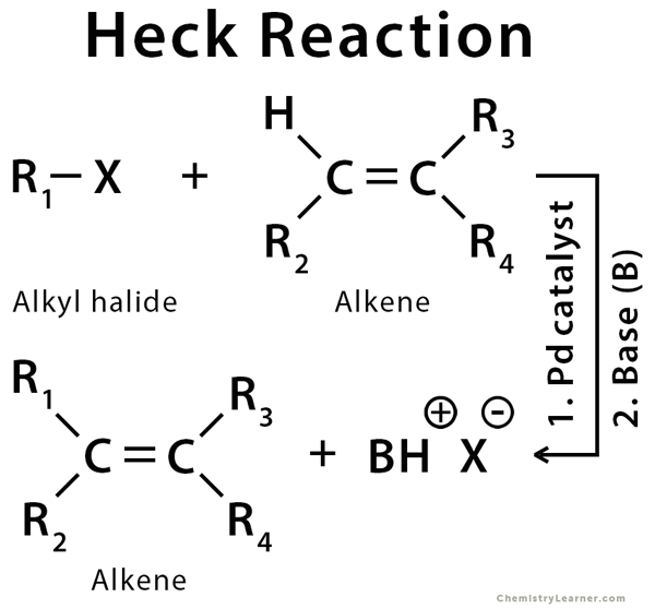 Heck Reaction Definition Example Mechanism Amp Application
