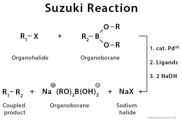 Suzuki Reaction Definition Example Mechanism Amp Application
